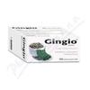 Gingio tablety por.tbl.flm.100x40mg